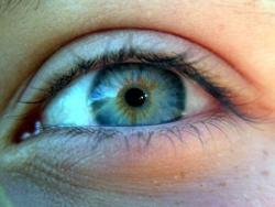 Twój wzrok